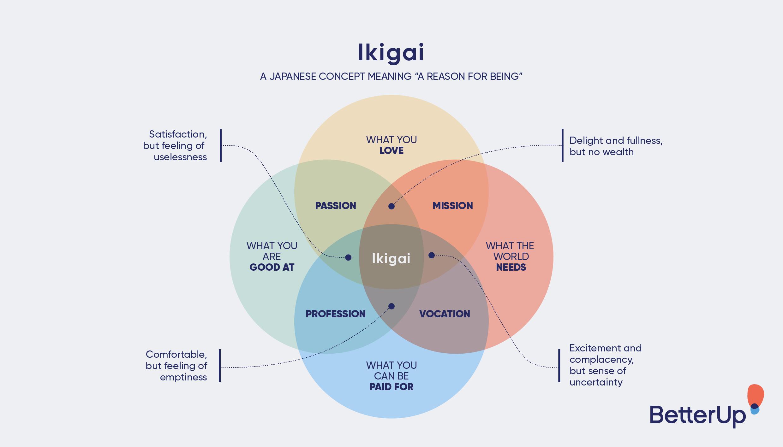sample ikigai diagram