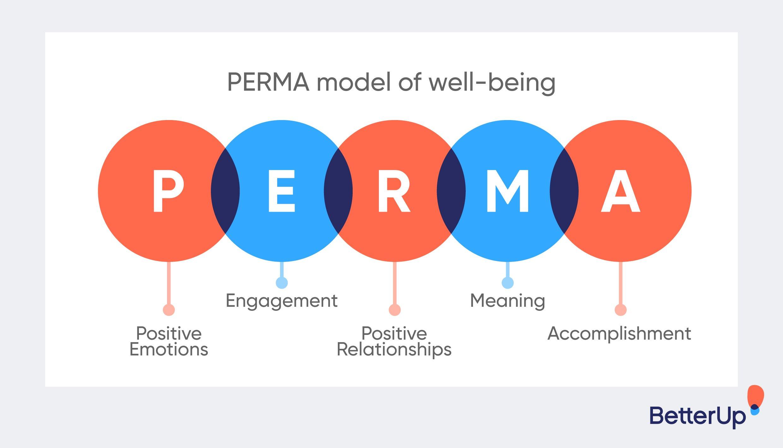 Visual representation of the Positive Psychology PERMA model